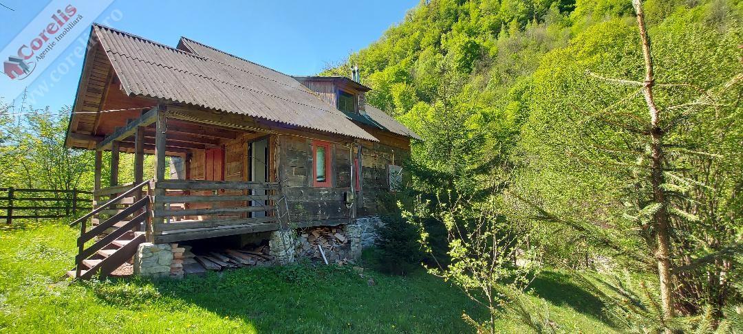 Cabana pe Valea Sebesului