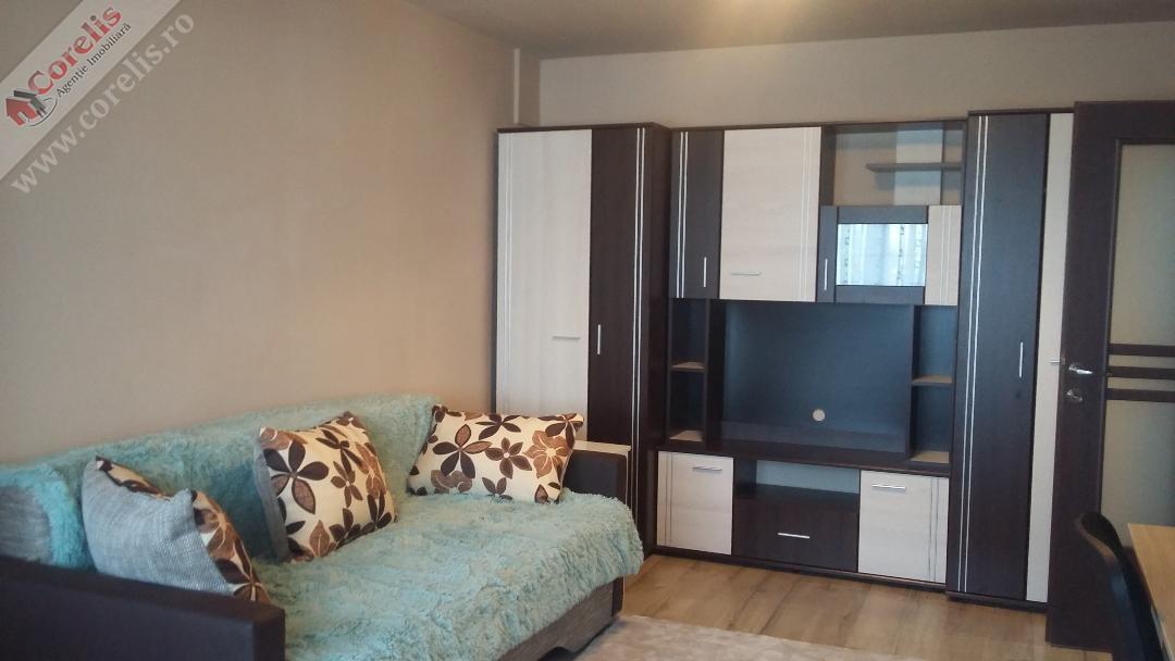 Apartament 1 camera Ceate